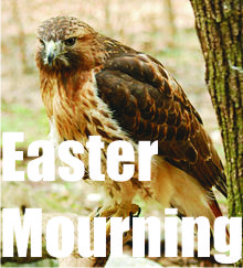 Easter Mourning title art